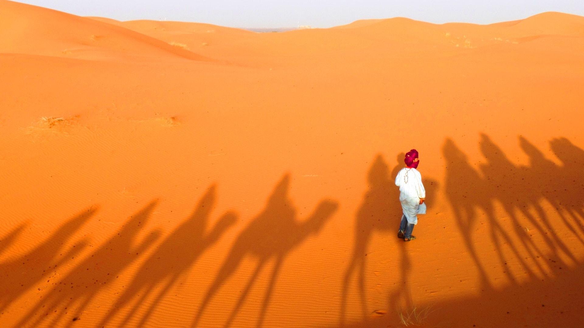 pathfinders treks - zagora desert camel trek 2 days