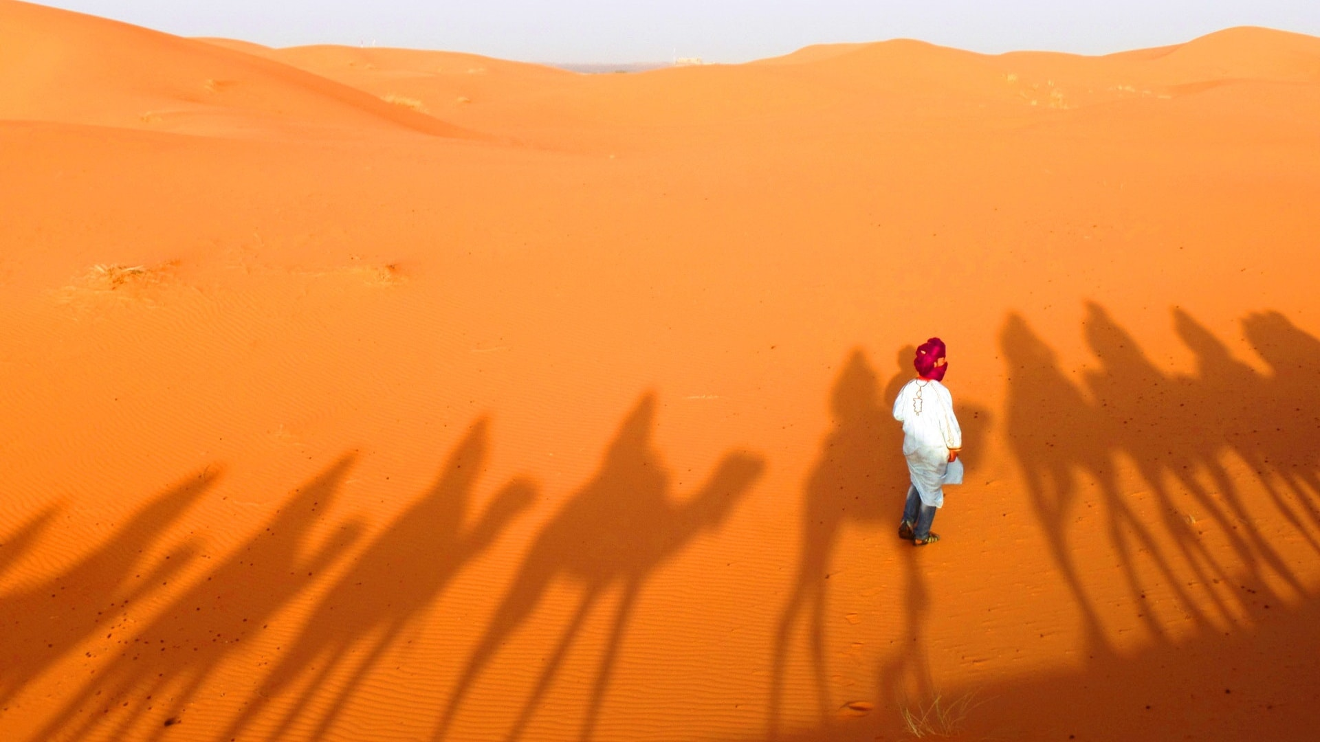 马拉喀什到费兹,包括在MERZOUGA沙丘骑骆驼 01